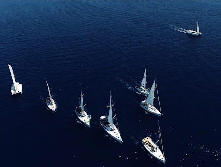 Yacht Week Regatta