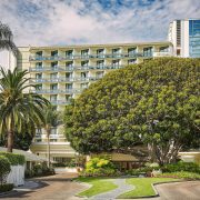 fairmont miramar entrance with bay fig tree