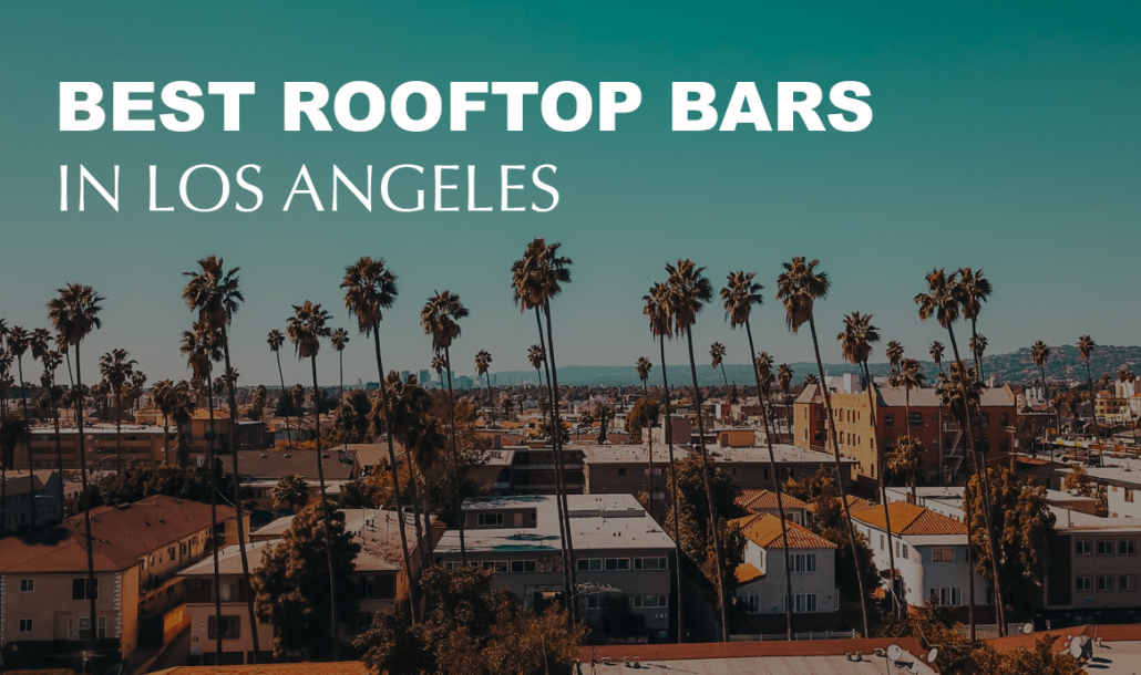 Best Rooftop Bars in Los angeles view of palm trees