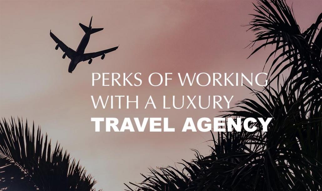 plane flying in sky travel agency