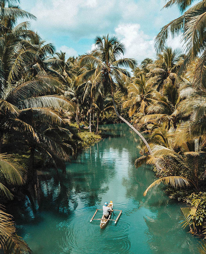 canoe in water surrounded by palm trees