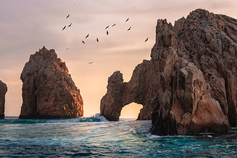 cabo nightlife destinations