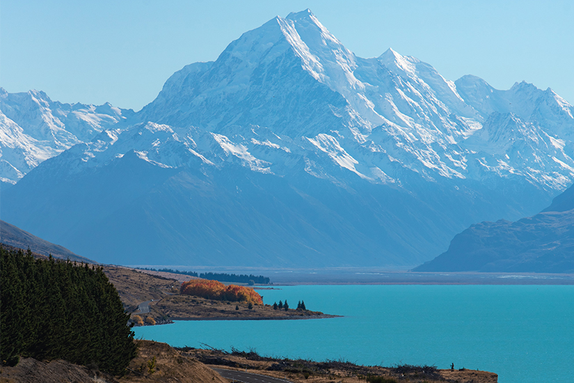 new zealand hotel destinations