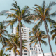 how to spend a 21st birthday in miami palm trees