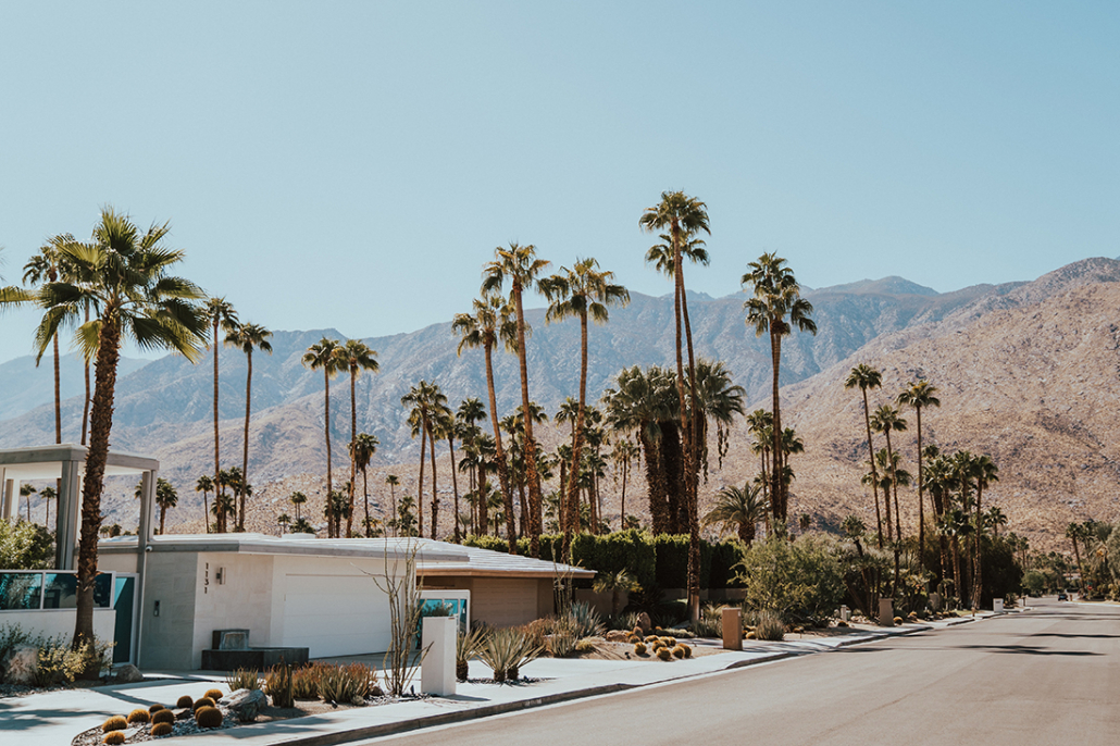 palm springs house with palm trees